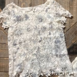 Joie stunning lace light blue and white top.